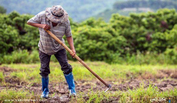 تغییر کاربری اراضی کشاورزی چیست